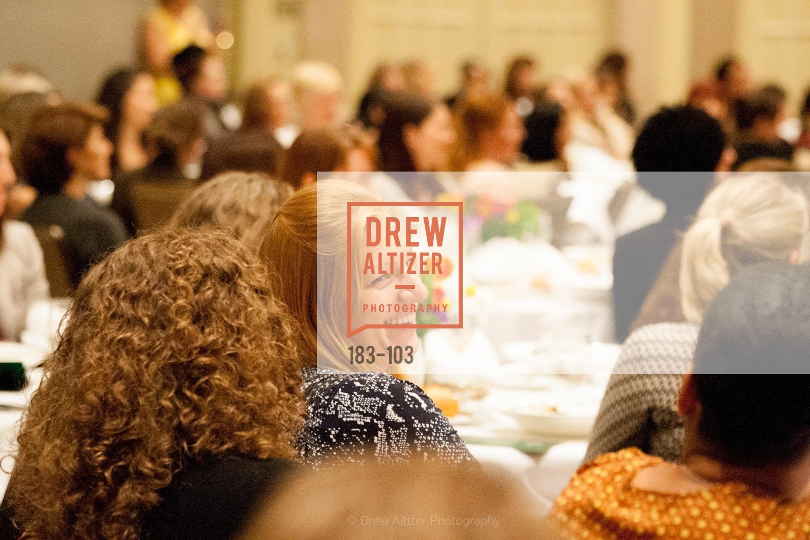 Extras, USF's Women in Leadership & Philanthropy Luncheon, May 14th, 2015, Photo,Drew Altizer, Drew Altizer Photography, full-service agency, private events, San Francisco photographer, photographer california