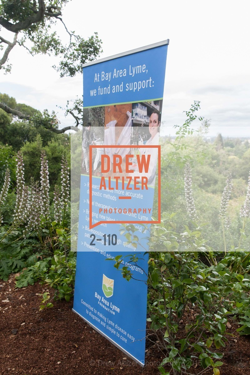 Atmosphere, LYME AID 2015 Benefiting the Bay Area Lyme Foundation, Private Residence, May 16th, 2015,Drew Altizer, Drew Altizer Photography, full-service agency, private events, San Francisco photographer, photographer california