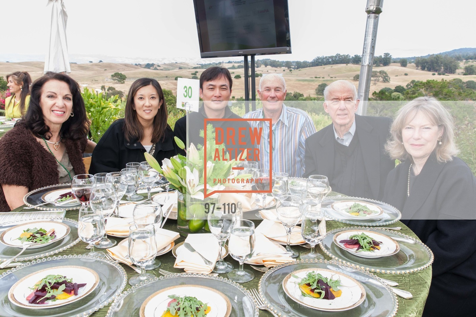 Lee Ann Morris, Karen Fann, Louis Lin, Garth Nystrom, LYME AID 2015 Benefiting the Bay Area Lyme Foundation, Private Residence, May 16th, 2015,Drew Altizer, Drew Altizer Photography, full-service agency, private events, San Francisco photographer, photographer california