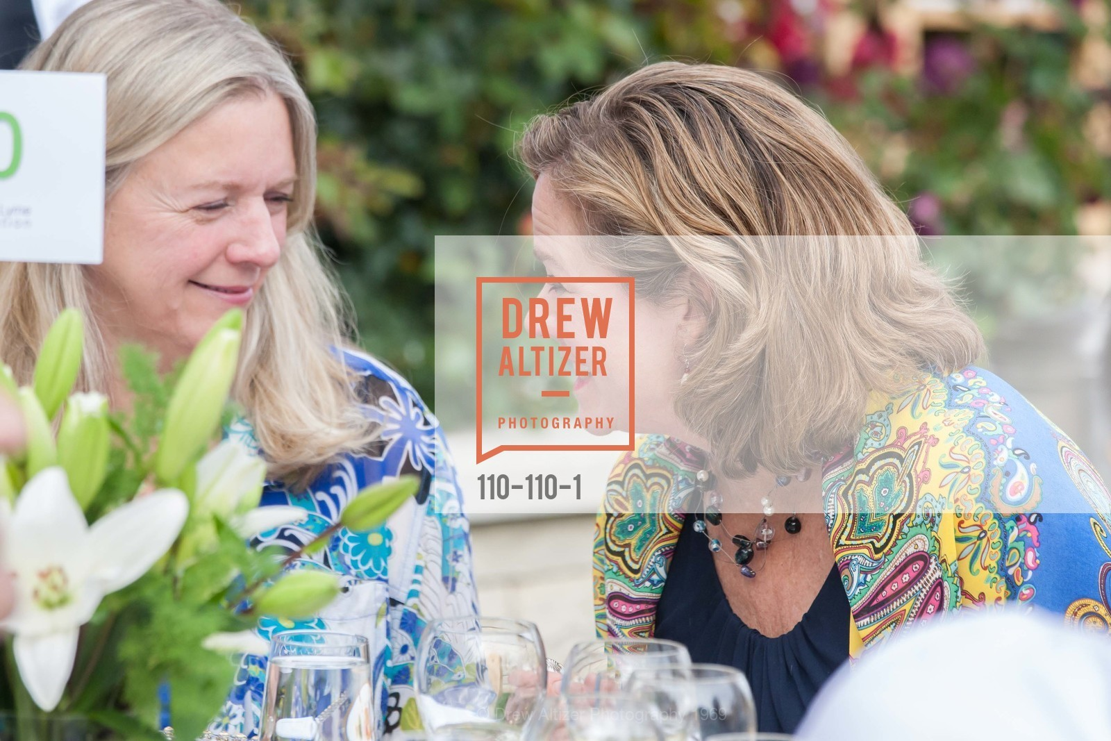 Rhonda Brier, LYME AID 2015 Benefiting the Bay Area Lyme Foundation, Private Residence, May 16th, 2015,Drew Altizer, Drew Altizer Photography, full-service agency, private events, San Francisco photographer, photographer california
