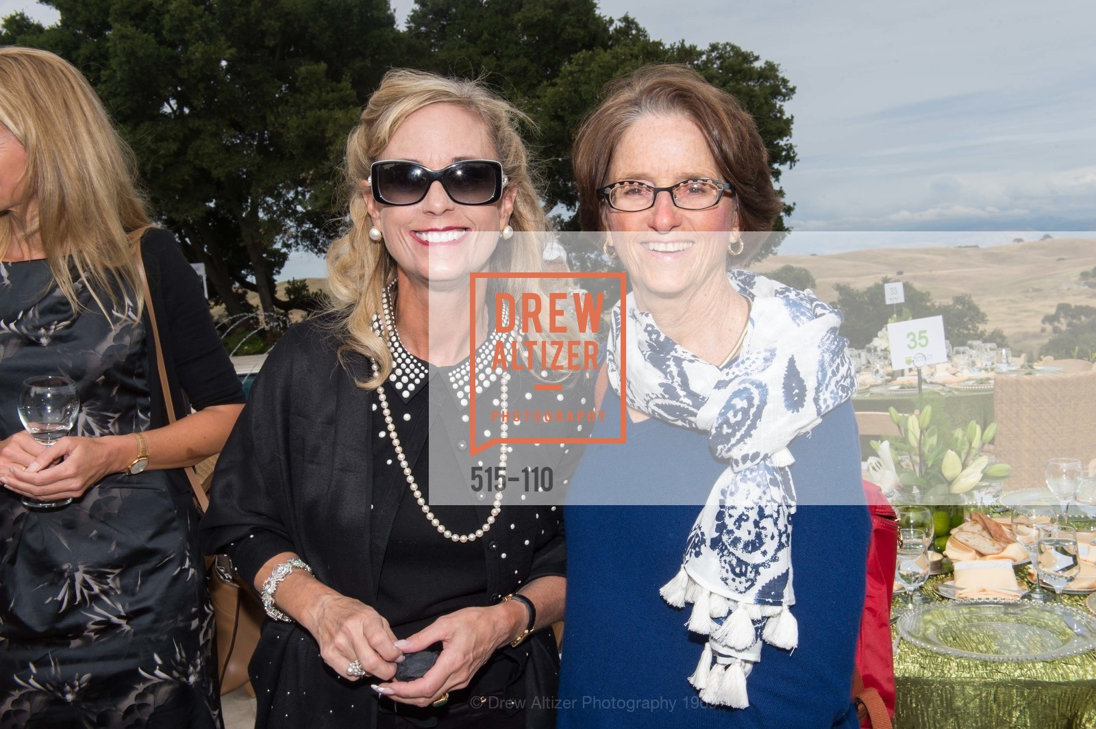 Eileen Morgenthaler, Elizabeth Sippel, LYME AID 2015 Benefiting the Bay Area Lyme Foundation, Private Residence, May 16th, 2015,Drew Altizer, Drew Altizer Photography, full-service agency, private events, San Francisco photographer, photographer california