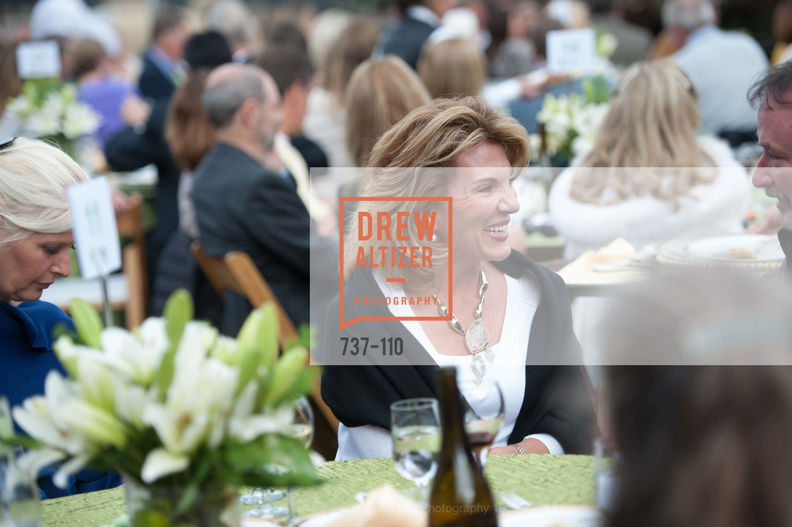 Jen Abed, LYME AID 2015 Benefiting the Bay Area Lyme Foundation, Private Residence, May 16th, 2015,Drew Altizer, Drew Altizer Photography, full-service agency, private events, San Francisco photographer, photographer california
