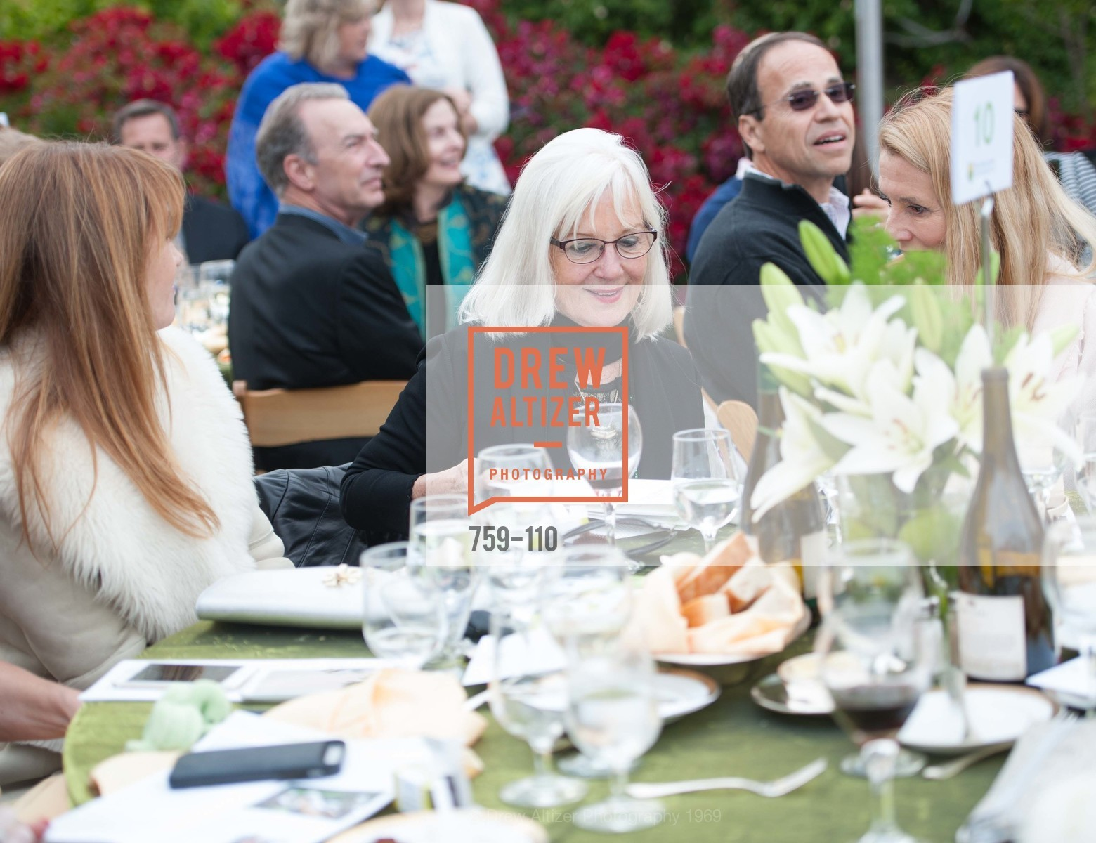 Arlene Inch, LYME AID 2015 Benefiting the Bay Area Lyme Foundation, Private Residence, May 16th, 2015,Drew Altizer, Drew Altizer Photography, full-service agency, private events, San Francisco photographer, photographer california