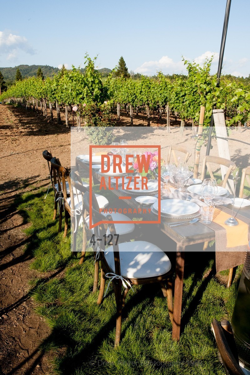 Atmosphere, An Evening in the Vineyard hosted by JACK CALHOUN & TRENT NORRIS, Jack Calhoun & Trent Norris Vineyard. 3393 Dry Creek Road, Healdsburg CA 95448, May 22nd, 2015,Drew Altizer, Drew Altizer Photography, full-service event agency, private events, San Francisco photographer, photographer California