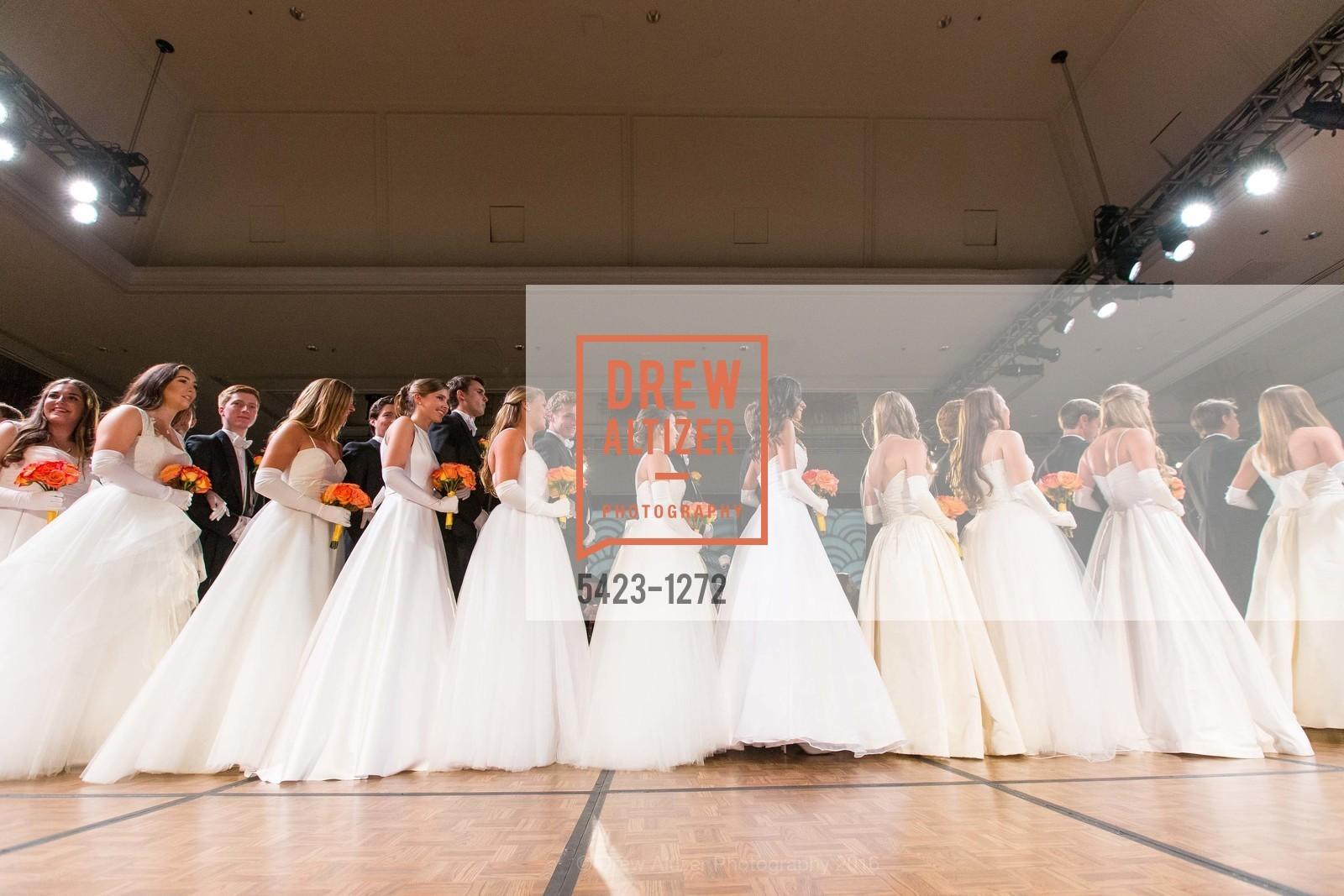 Debutantes, Photo #5423-1272