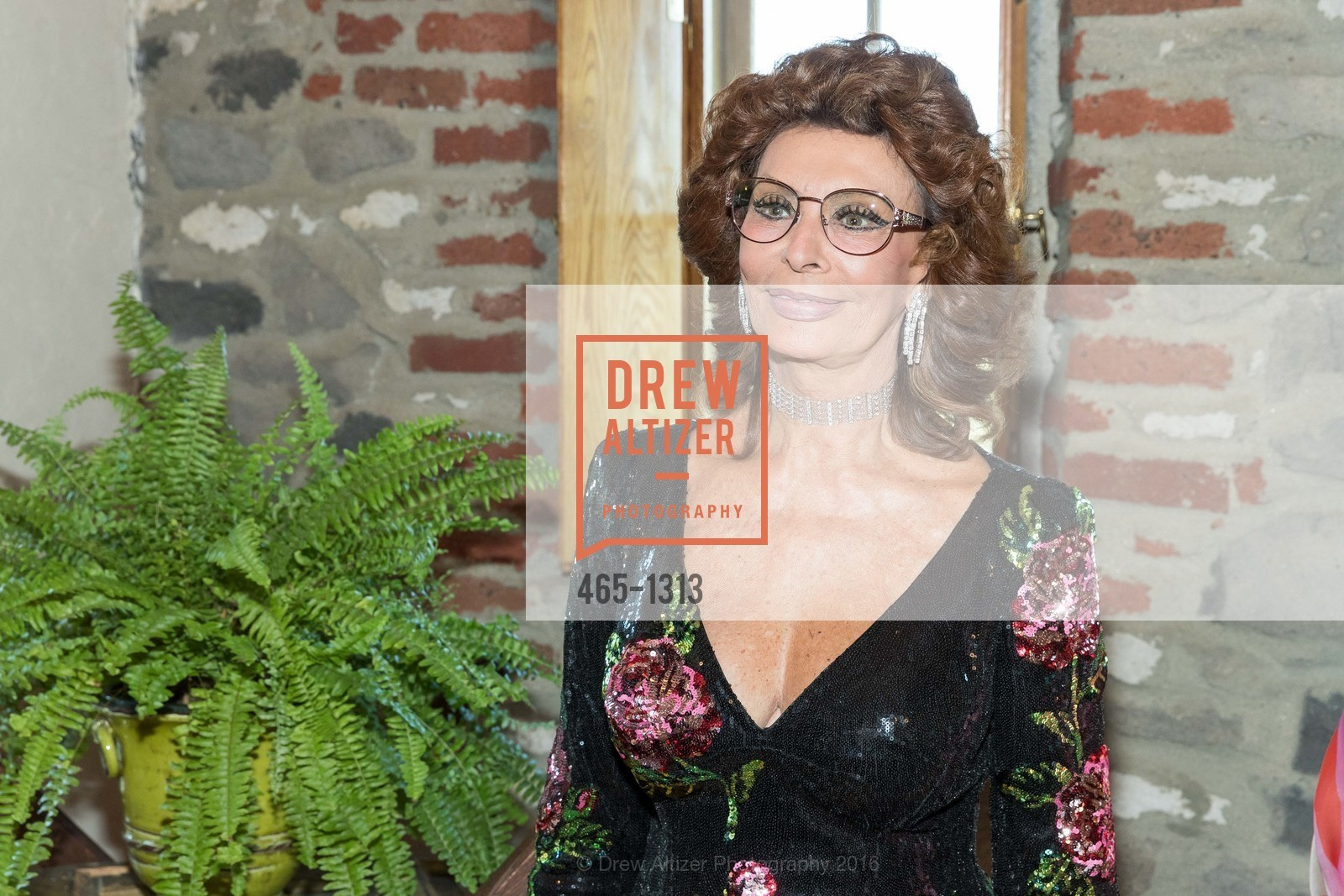 Sophia Loren, Festival Napa Valley Tribute to Margrit Mondavi at Far Niente, Far Niente Winery. 1350 Acacia Dr, July 23rd, 2016