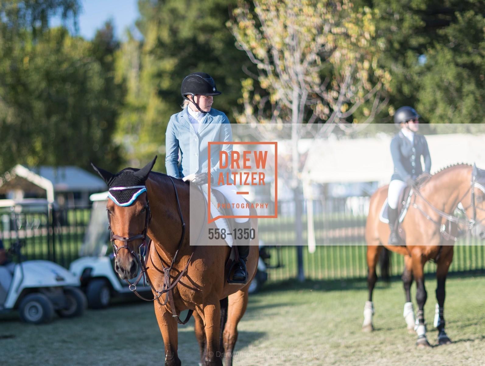 Horse Show, Photo #558-1350