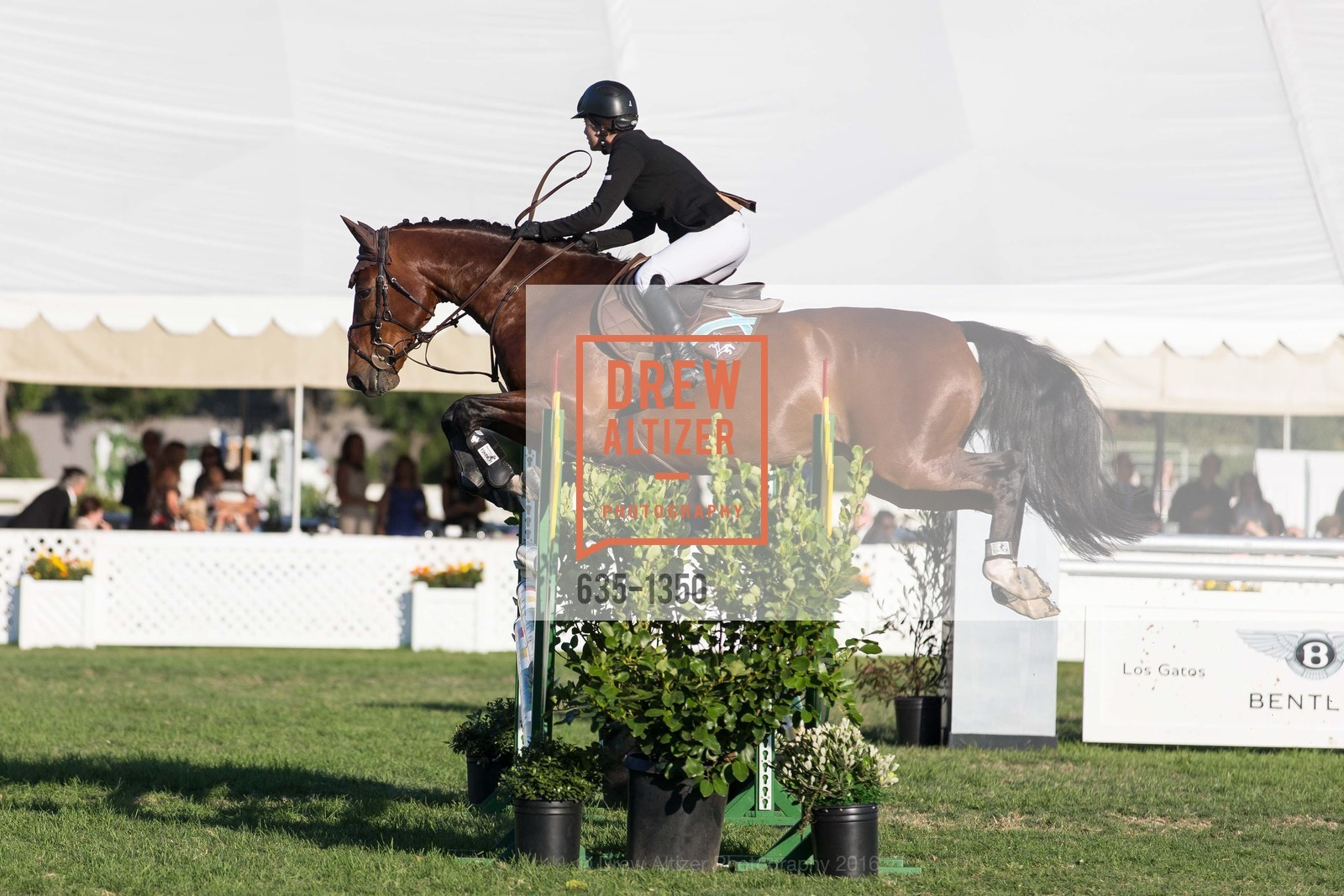 Horse Show, Photo #635-1350