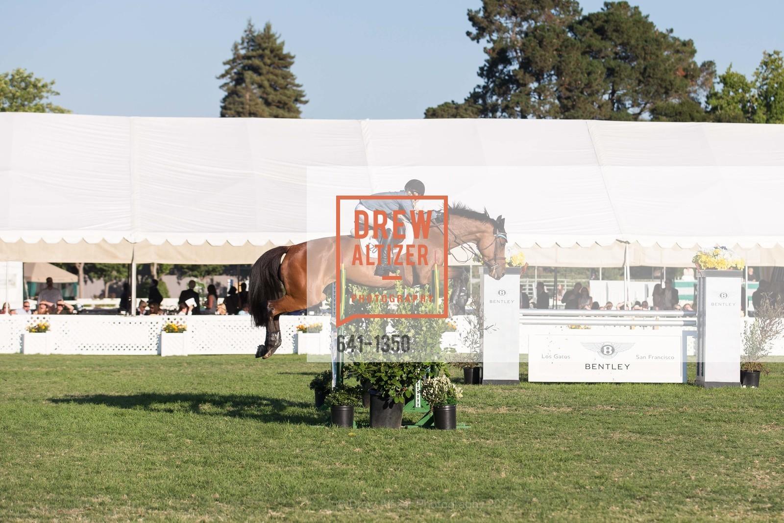 Horse Show, Photo #641-1350