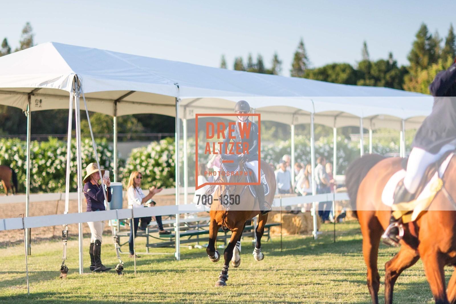 Horse Show, Photo #700-1350