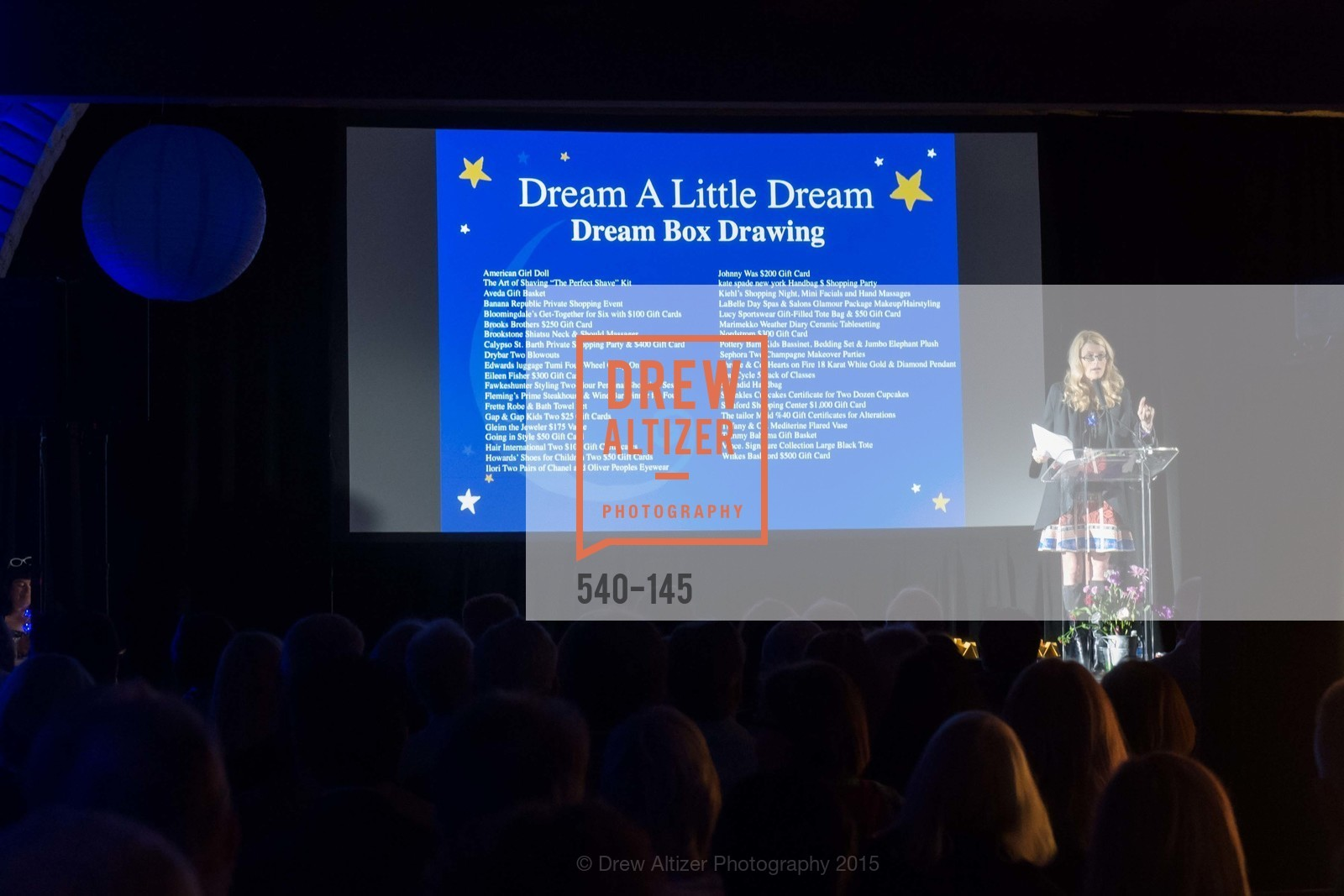 Diane Dwyer, DREAMS HAPPEN: Playhouse Auction and Gala, Stanford Shopping Center, June 5th, 2015,Drew Altizer, Drew Altizer Photography, full-service agency, private events, San Francisco photographer, photographer california