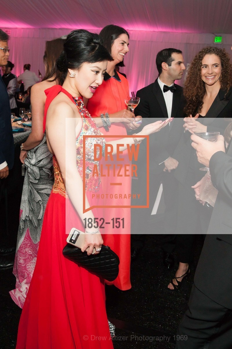 Lisa Fei, Asian Art Museum 28 Chinese Opening Night Gala, Asian Art Museum. 200 Larkin St, June 2nd, 2015,Drew Altizer, Drew Altizer Photography, full-service agency, private events, San Francisco photographer, photographer california