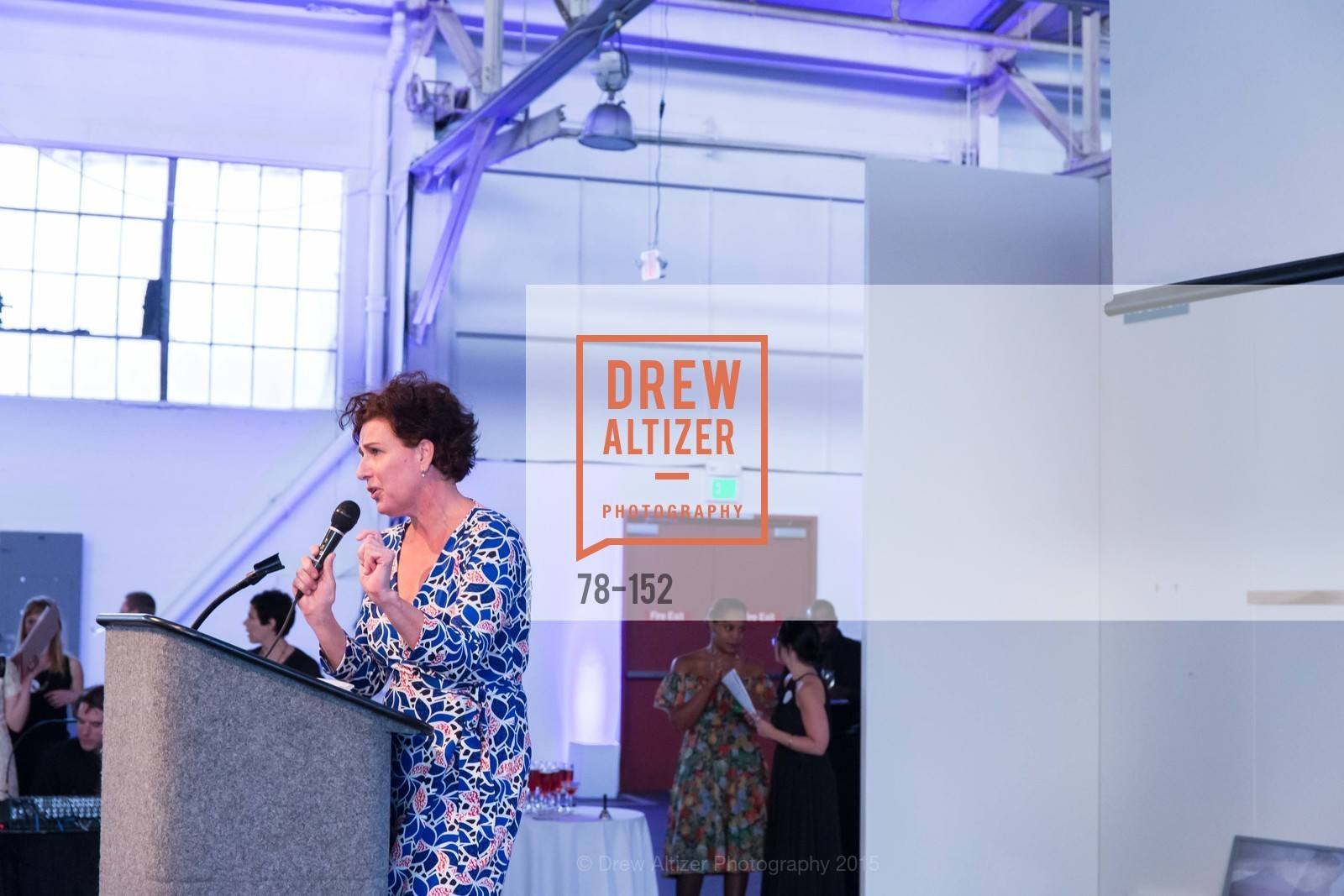 Top picks, Headlands Center for the Arts Benefit Auction, June 2nd, 2015, Photo,Drew Altizer, Drew Altizer Photography, full-service agency, private events, San Francisco photographer, photographer california