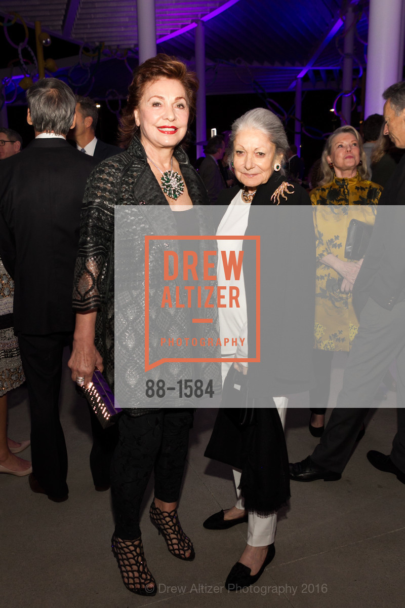Maria Manetti Shrem, Denise Hale, Director's Debut, Manetti Shrem Museum of Art. Old Davis Road at Alumni Lane, November 12th, 2016