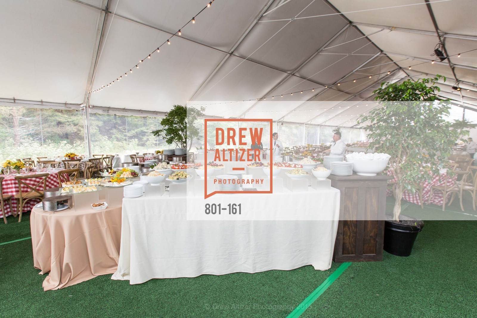 Atmosphere, THE BIG PICNIC Kicking off  2015 Stern Grove Season, Stern Grove. 2750 19th Avenue, June 14th, 2015,Drew Altizer, Drew Altizer Photography, full-service event agency, private events, San Francisco photographer, photographer California