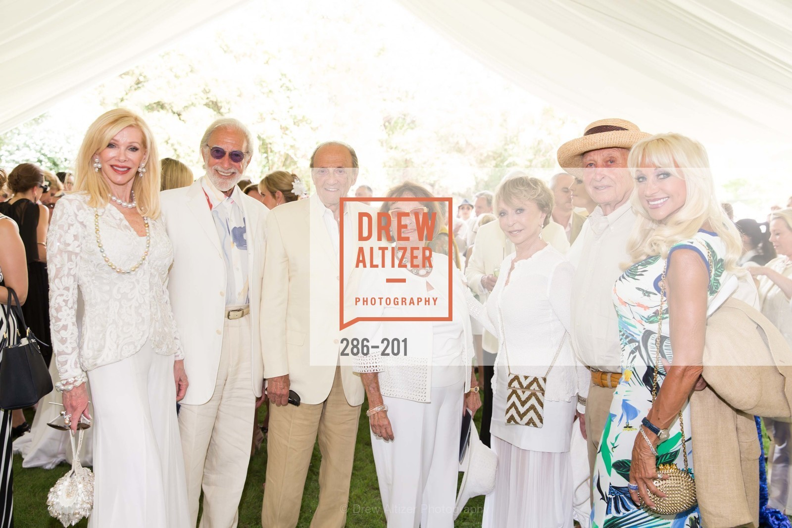 Pamala Deikel, Ted Deikel, Ron Wornick, Anita Wornick, Roberta Sherman, Gerry Grodsky, Daru Kawalkowski, Festival del Sole Annual Gala at Meadowood Napa Valley, Meadowood Napa Valley. 900 Meadowood Ln, July 19th, 2015,Drew Altizer, Drew Altizer Photography, full-service agency, private events, San Francisco photographer, photographer california