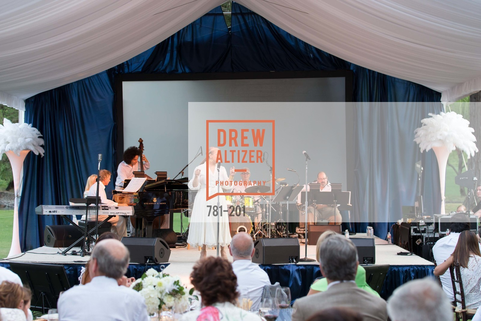 Patti Austin, Festival del Sole Annual Gala at Meadowood Napa Valley, Meadowood Napa Valley. 900 Meadowood Ln, July 19th, 2015,Drew Altizer, Drew Altizer Photography, full-service agency, private events, San Francisco photographer, photographer california