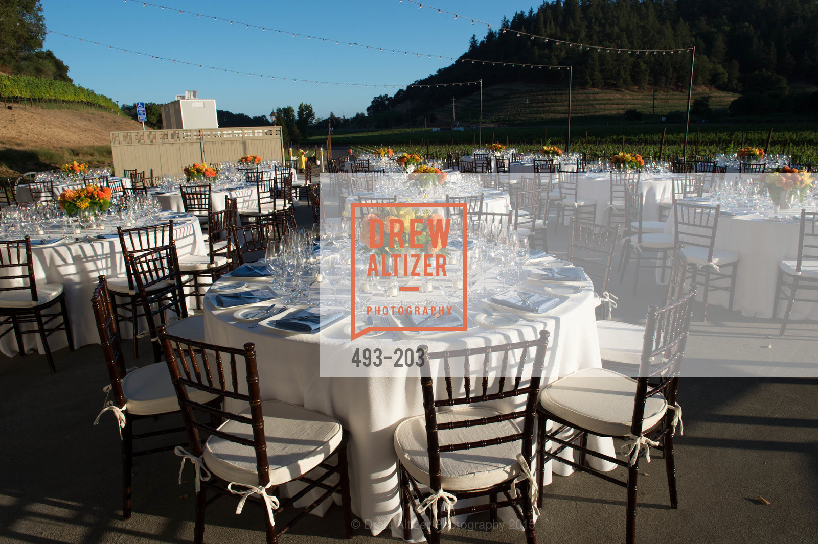 Atmosphere, Festival del Sole Patron Dinner at Odette Estate, Odette Estate. 5998 Silverado Trail, July 26th, 2015
