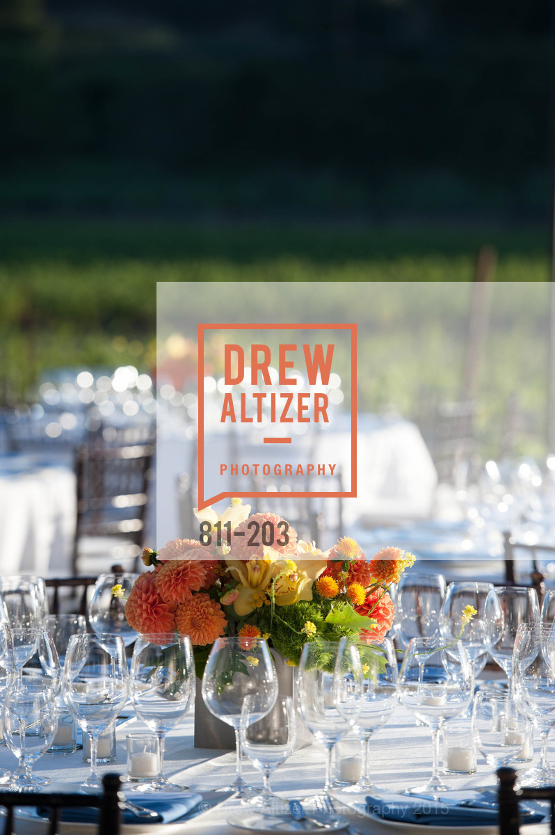 Atmosphere, Festival del Sole Patron Dinner at Odette Estate, Odette Estate. 5998 Silverado Trail, July 26th, 2015,Drew Altizer, Drew Altizer Photography, full-service agency, private events, San Francisco photographer, photographer california