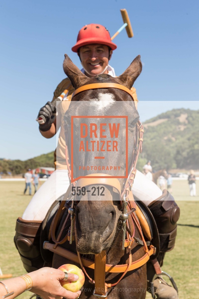 Atmosphere, Stick & Ball Oyster Cup Polo Tournament, Cerro Pampa Polo Club, July 25th, 2015,Drew Altizer, Drew Altizer Photography, full-service agency, private events, San Francisco photographer, photographer california