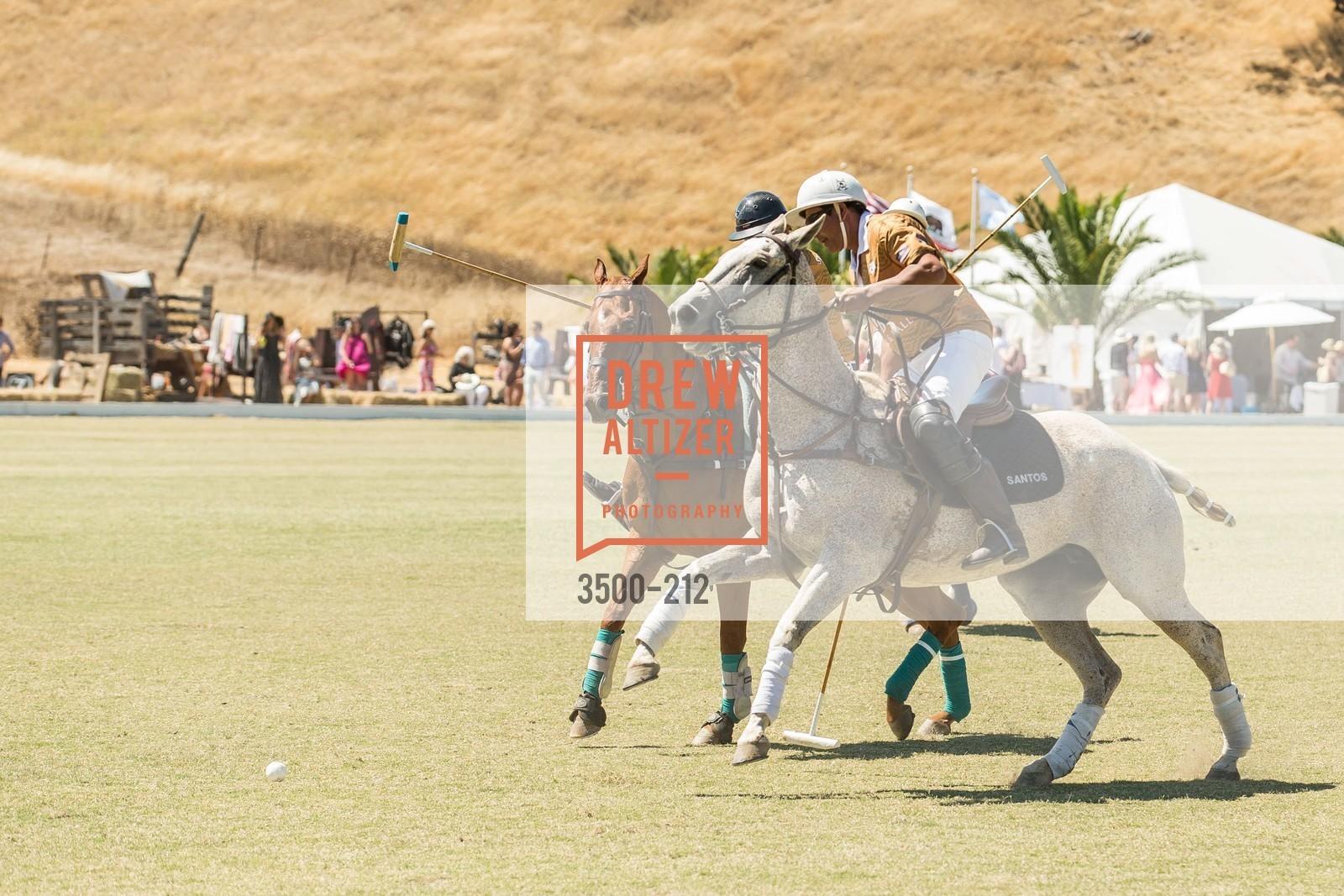 Polo Match, Photo #3500-212