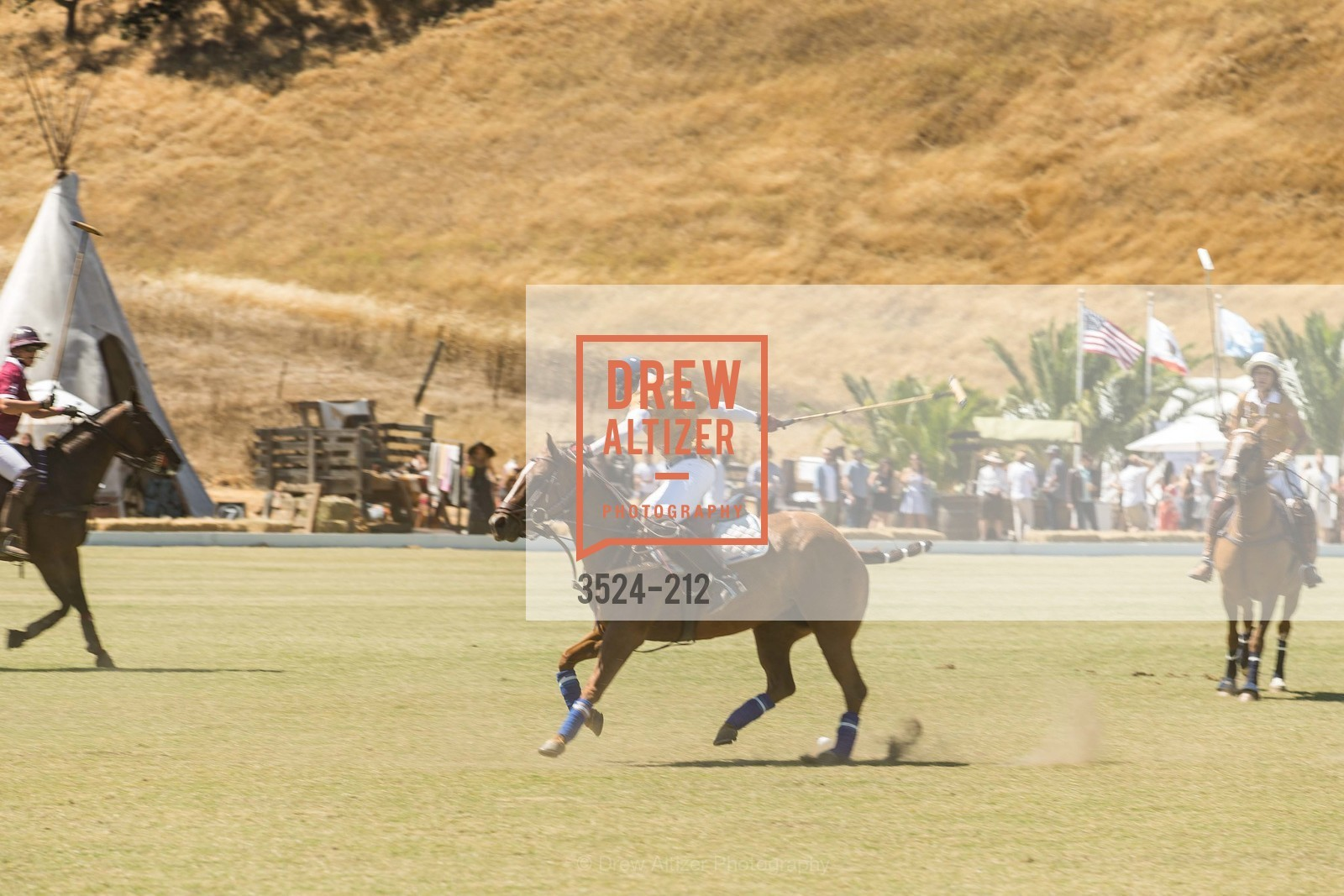 Polo Match, Photo #3524-212