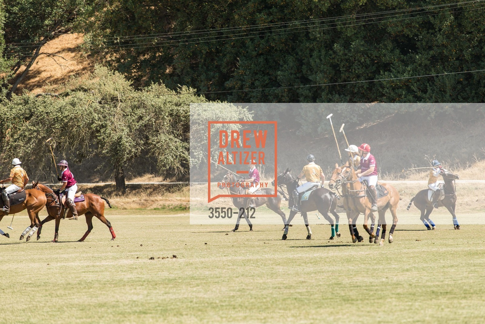 Polo Match, Photo #3550-212