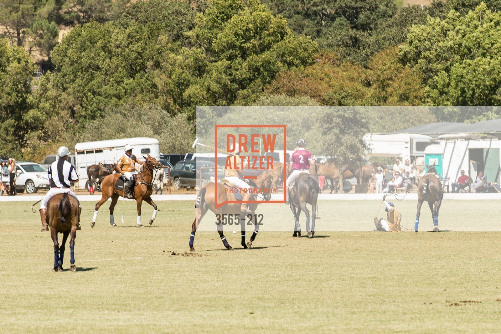 Polo Match, Photo #3565-212