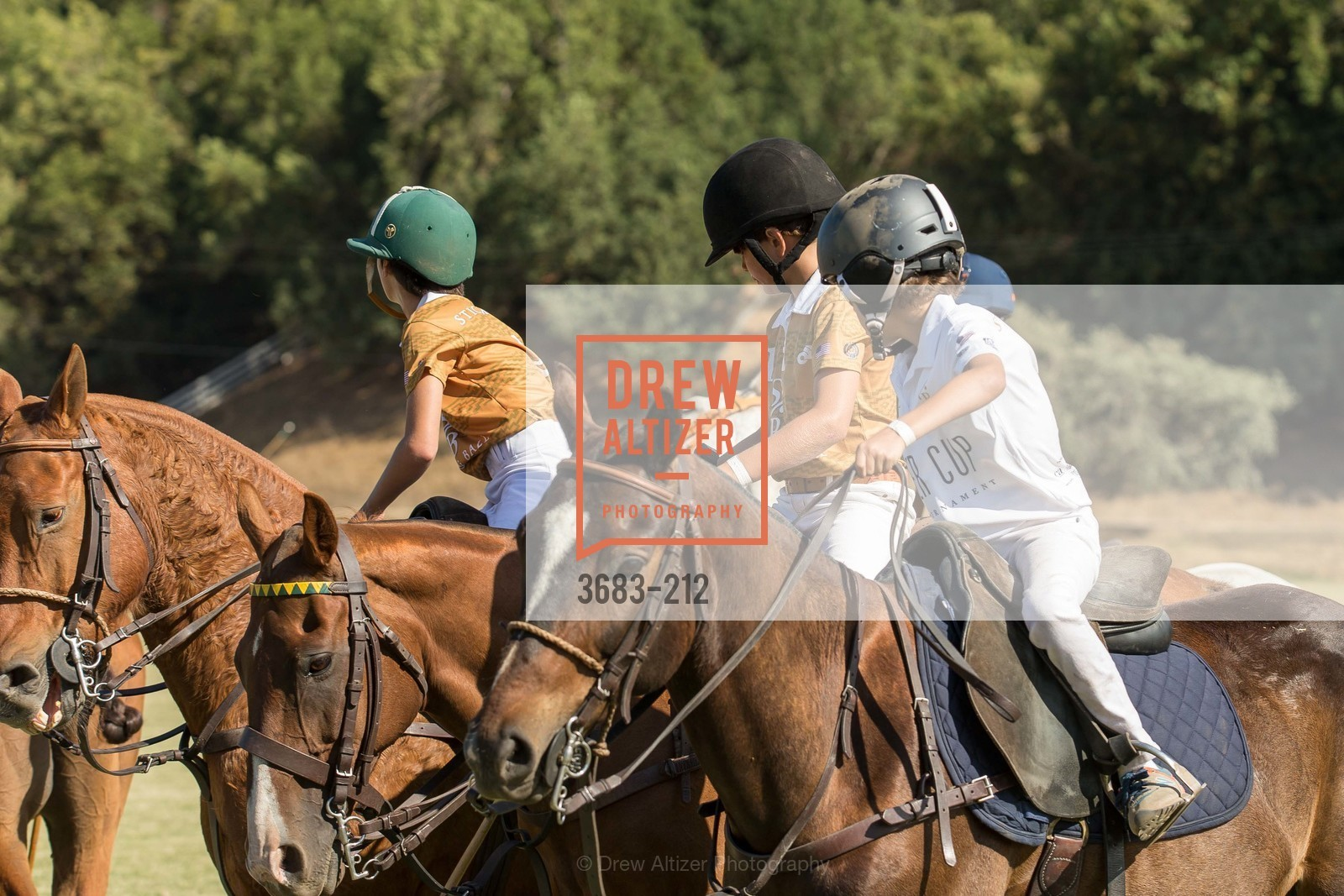 Polo Match, Stick & Ball Oyster Cup Polo Tournament, Cerro Pampa Polo Club, July 25th, 2015