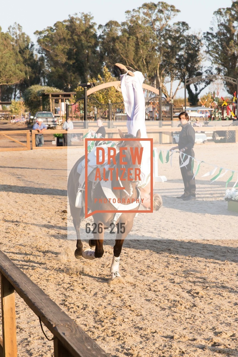 Horse Show, 2015 GIANT STEPS Charity Classic presented by Hermes, Sonoma Horse Park. 7600 Lakeville Highway, August 1st, 2015,Drew Altizer, Drew Altizer Photography, full-service agency, private events, San Francisco photographer, photographer california