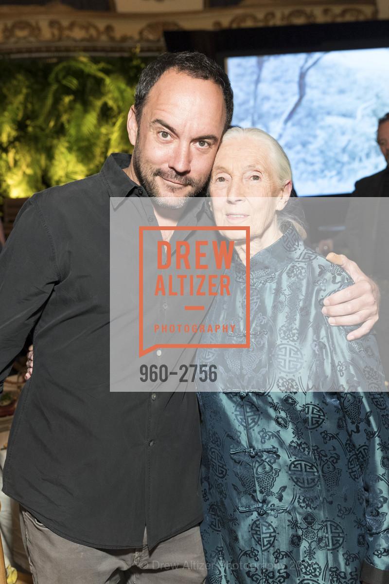 Dave Matthews, Jane Goodall, Photo #960-2756