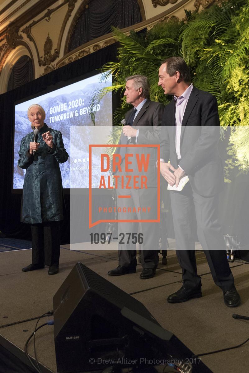 Jane Goodall, Forrest Sawyer, Charlie Knowles, Photo #1097-2756