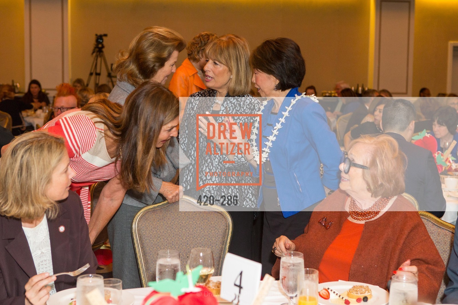 Ellen Magnim Newman, CCSF Basic Skills Luncheon, Fairmont Hotel, Grand Ballroom, September 15th, 2015,Drew Altizer, Drew Altizer Photography, full-service agency, private events, San Francisco photographer, photographer california