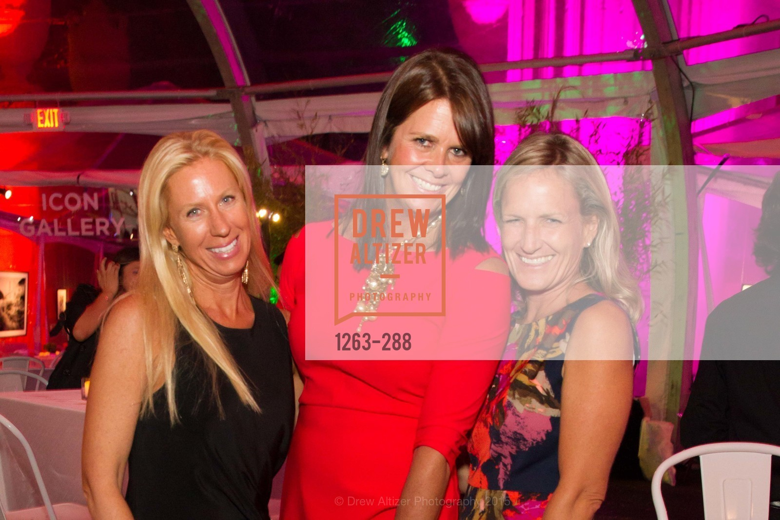 Christine Gardner, Janet Bijur, Party for the Parks 2015, Palace of Fine Arts. 3301 Lyon St, September 19th, 2015,Drew Altizer, Drew Altizer Photography, full-service agency, private events, San Francisco photographer, photographer california