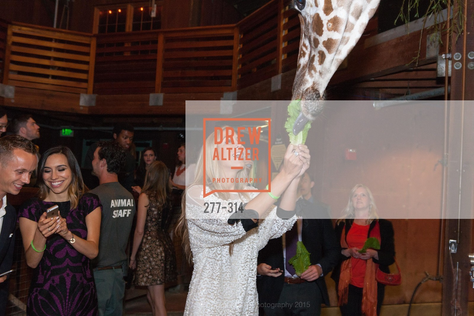 Chelsea Wilson, San Francisco Zoo Fur Ball, San Francisco Zoo, September 25th, 2015,Drew Altizer, Drew Altizer Photography, full-service event agency, private events, San Francisco photographer, photographer California
