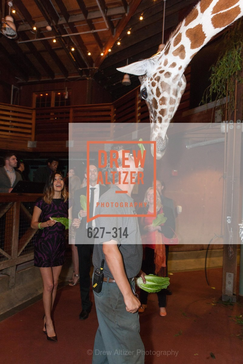 Extras, San Francisco Zoo Fur Ball, September 25th, 2015, Photo