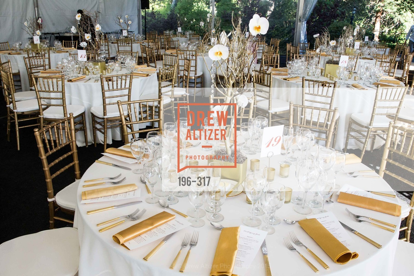 Atmosphere, CuriOdyssey At Coyote Point 2015 Gala, CuriOdyssey. 401 El Cerrito Avenue, September 26th, 2015,Drew Altizer, Drew Altizer Photography, full-service agency, private events, San Francisco photographer, photographer california