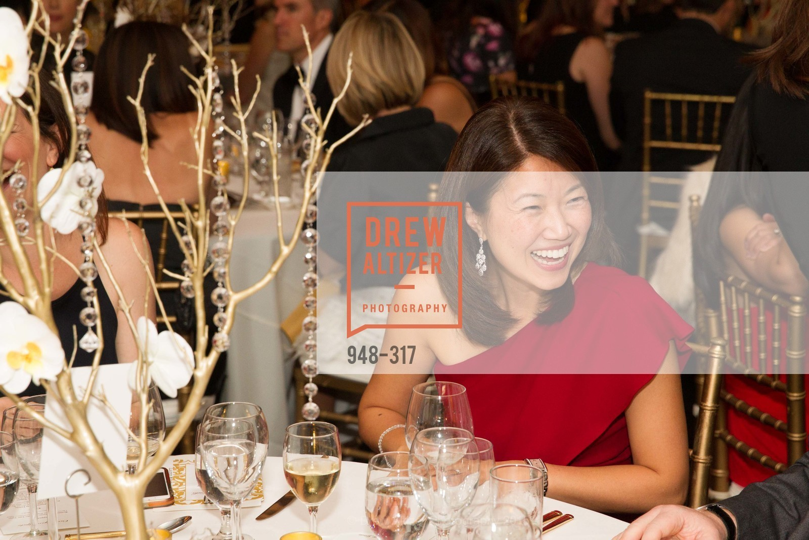 Top Picks, CuriOdyssey At Coyote Point 2015 Gala, September 26th, 2015, Photo