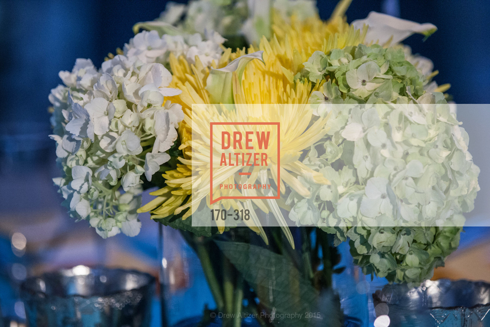 Atmosphere, Coral Reef Alliance at the California Academy of Sciences, Academy of Sciences, September 26th, 2015,Drew Altizer, Drew Altizer Photography, full-service event agency, private events, San Francisco photographer, photographer California