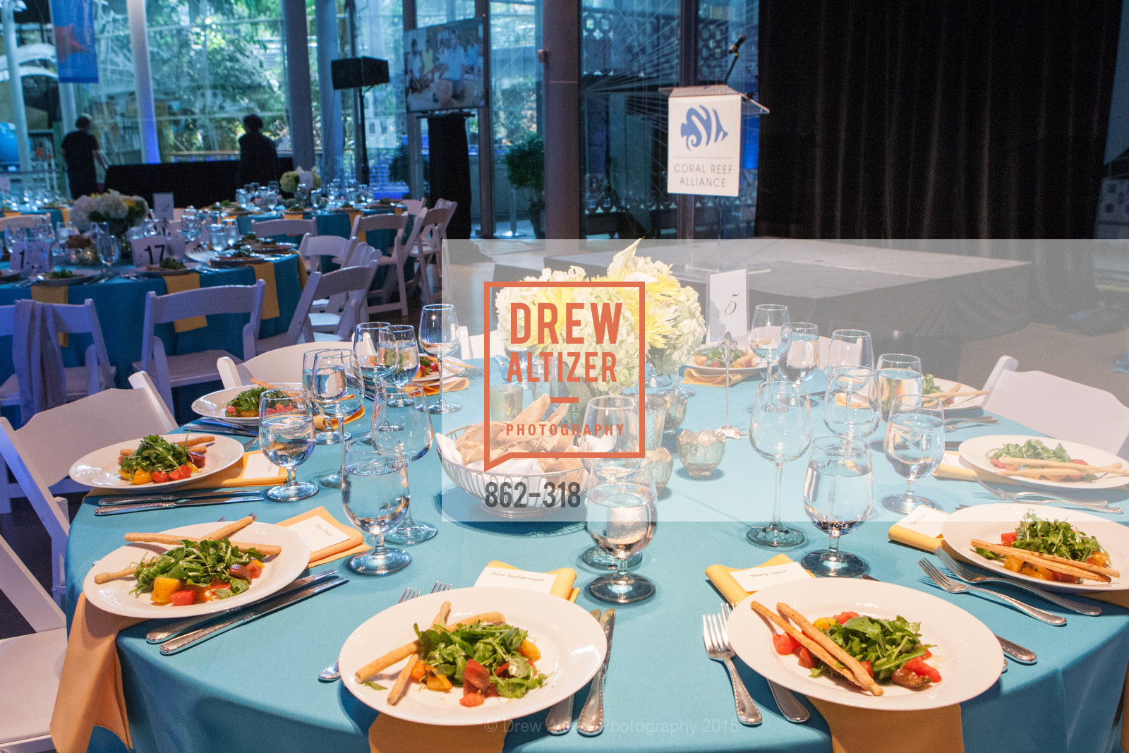 Atmosphere, Coral Reef Alliance at the California Academy of Sciences, Academy of Sciences, September 26th, 2015,Drew Altizer, Drew Altizer Photography, full-service agency, private events, San Francisco photographer, photographer california