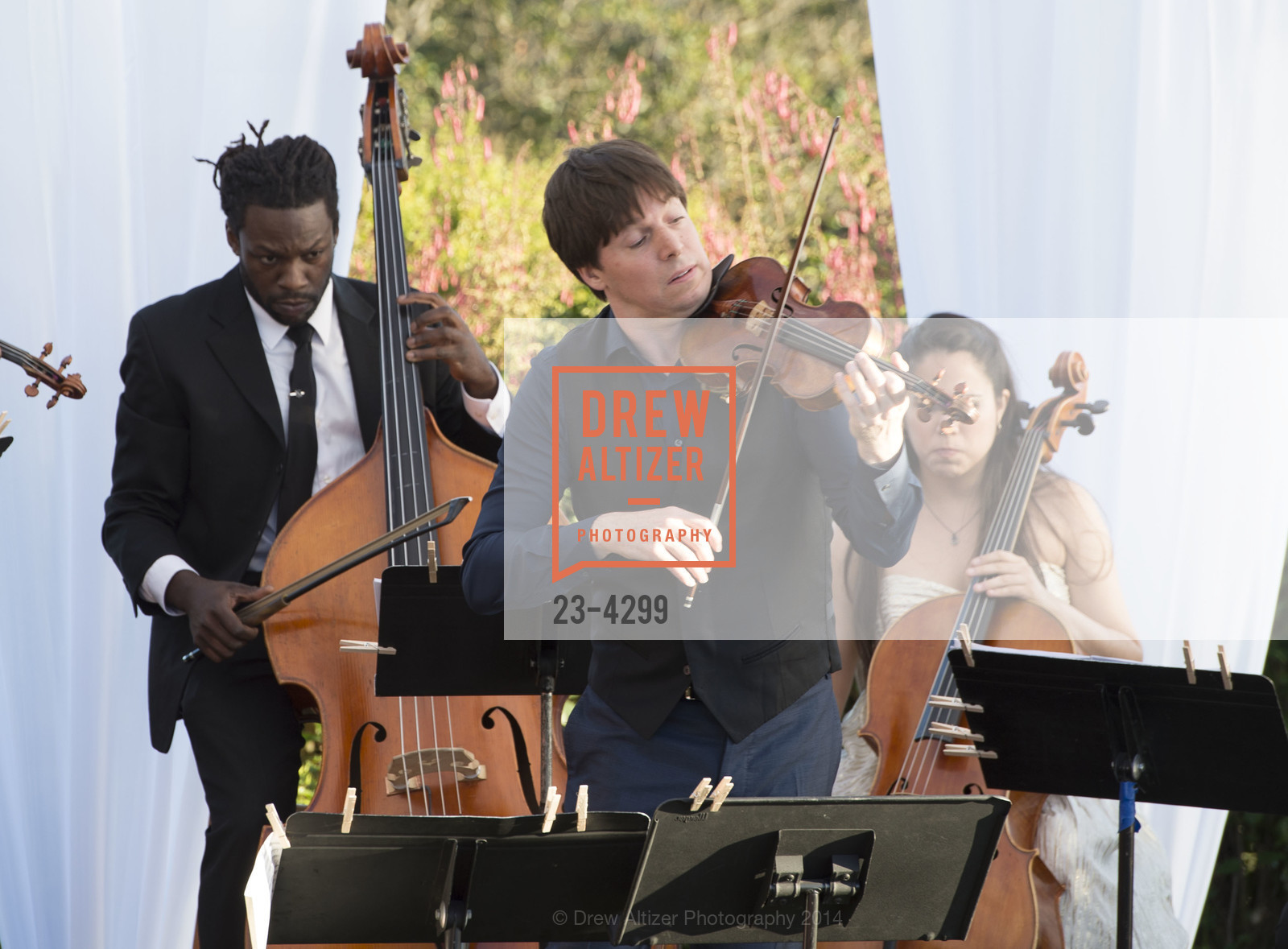 Performance By Joshua Bell, Photo #23-4299
