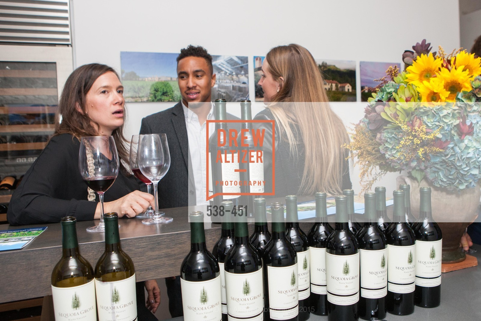 Alisa Birgy, Trey Sims, Healdsburg Dream Estates Cocktail Party, Taylor Lombardo. 40 Hotaling Place, November 5th, 2015,Drew Altizer, Drew Altizer Photography, full-service agency, private events, San Francisco photographer, photographer california