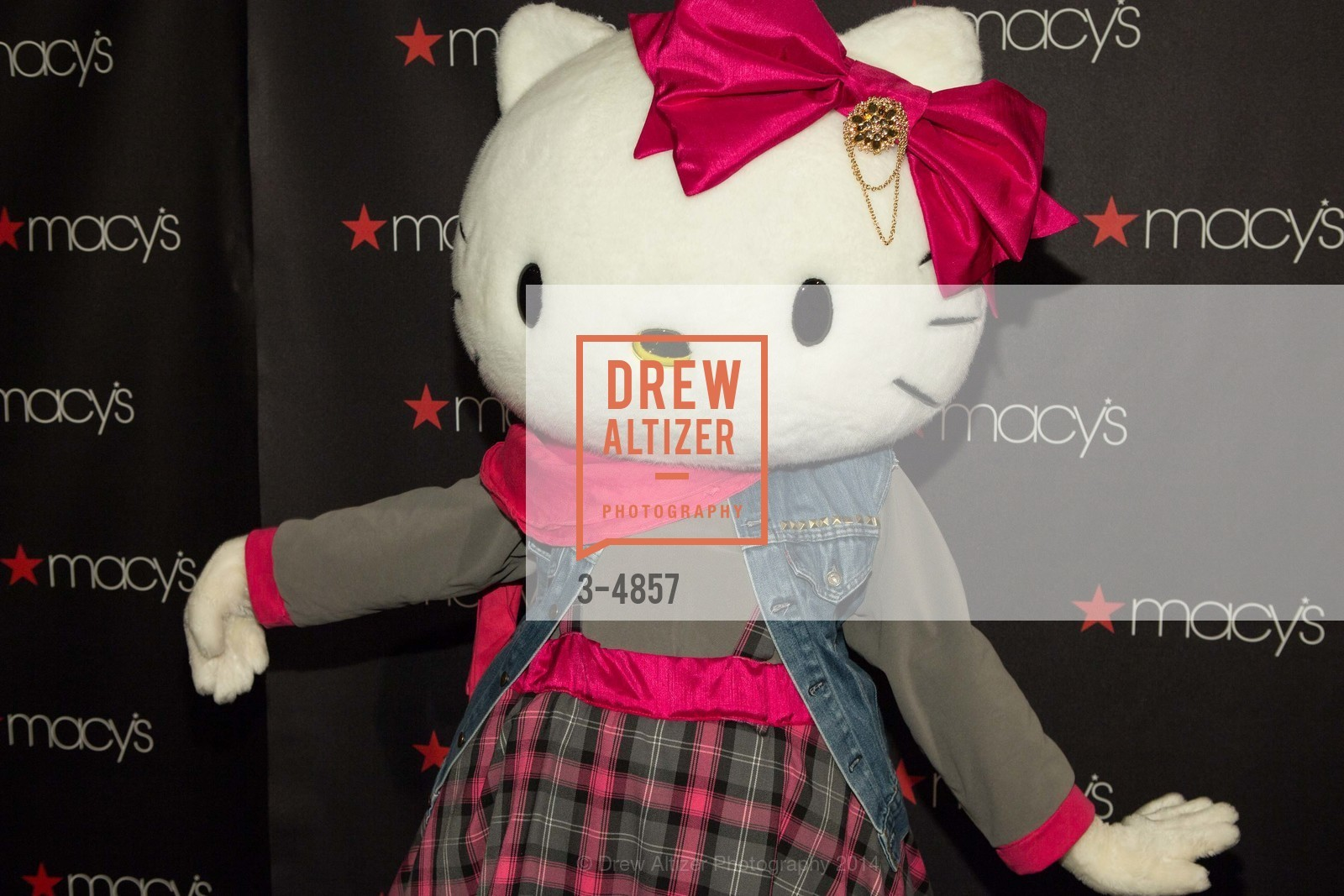 Hello Kitty, Photo #3-4857