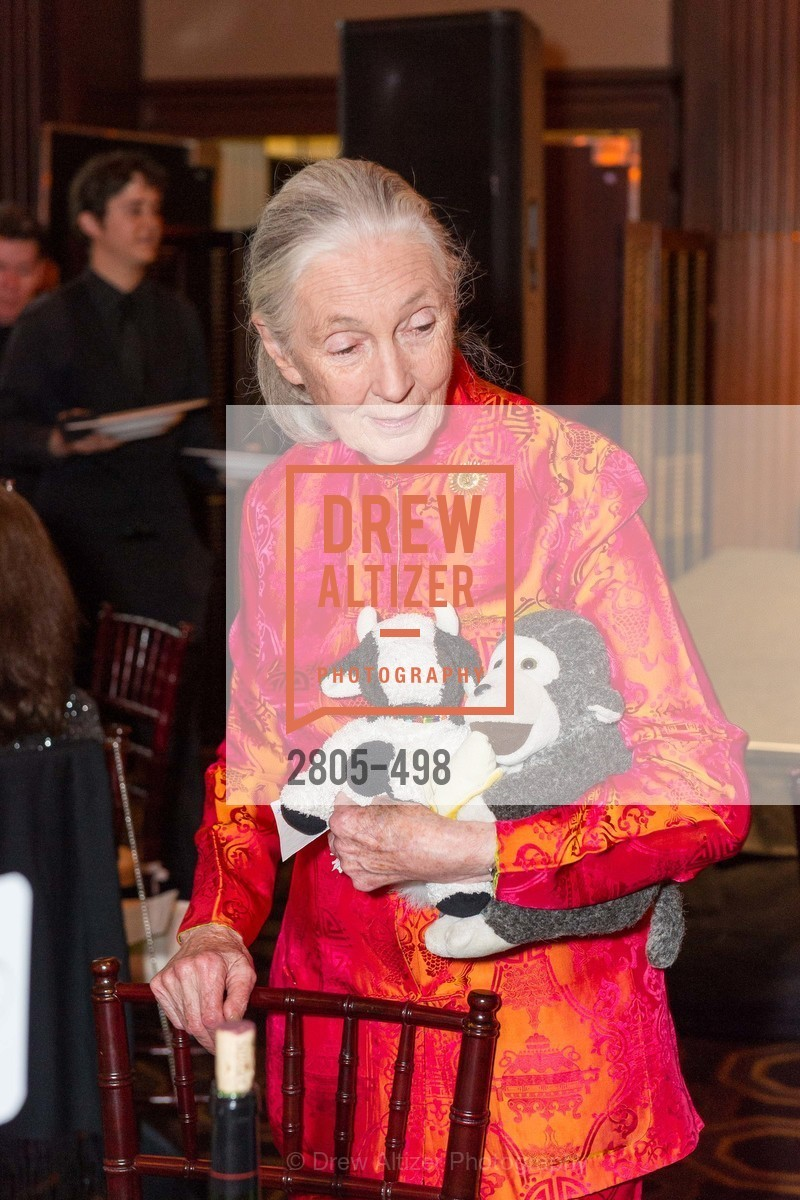 Jane Goodall, Dr. Jane Goodall 80th Birthday Celebration, US. US, April 3rd, 2014,Drew Altizer, Drew Altizer Photography, full-service event agency, private events, San Francisco photographer, photographer California