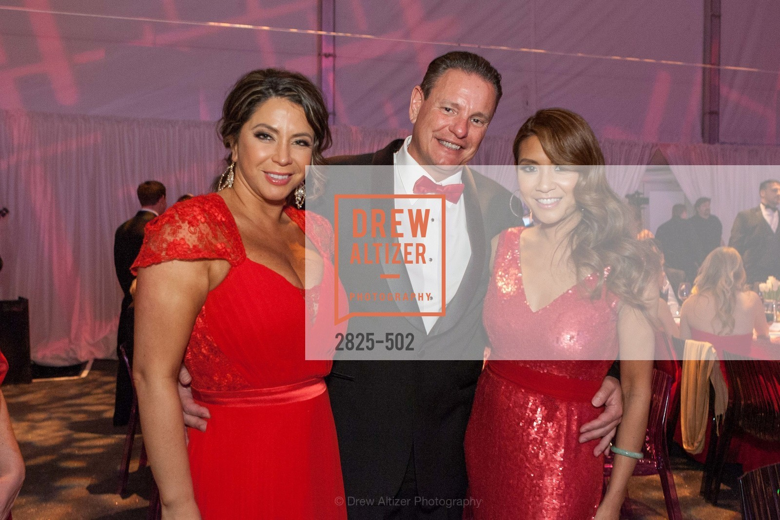 Maria Barrios, Richard Ehmer, Lillian Phan, 2014 RED CROSS Gala Honoring Paula Downey as the American Red Cross Bay Area Chapter Humanitarian CEO of the Year, US. Treasure Island (The Great Lawn), April 5th, 2014,Drew Altizer, Drew Altizer Photography, full-service agency, private events, San Francisco photographer, photographer california