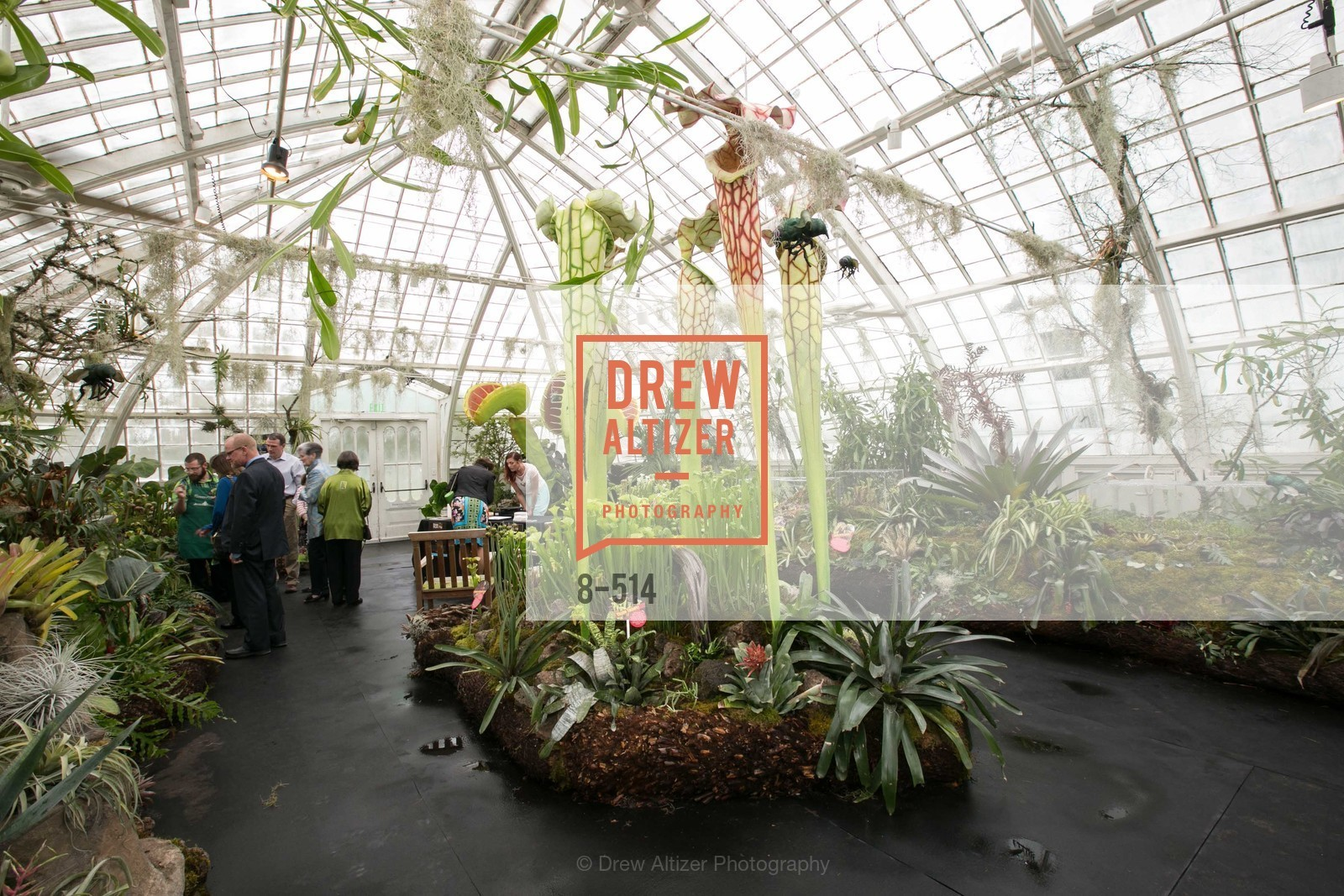 Atmosphere, SF Conservatory of Flowers - CHOMP They came from the swamp, US. US, April 10th, 2014,Drew Altizer, Drew Altizer Photography, full-service agency, private events, San Francisco photographer, photographer california