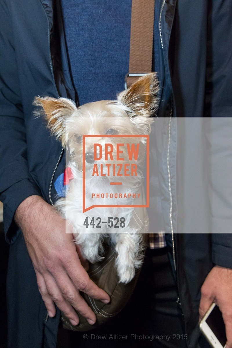 Chloe, Jay Jeffers for Arteriors Launch, Jay Jeffers - The Store. 1035 Post St, November 12th, 2015,Drew Altizer, Drew Altizer Photography, full-service agency, private events, San Francisco photographer, photographer california