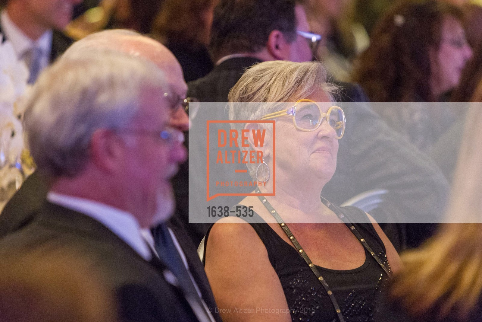 Top Picks, Hellenic Charity Ball, November 14th, 2015, Photo,Drew Altizer, Drew Altizer Photography, full-service agency, private events, San Francisco photographer, photographer california