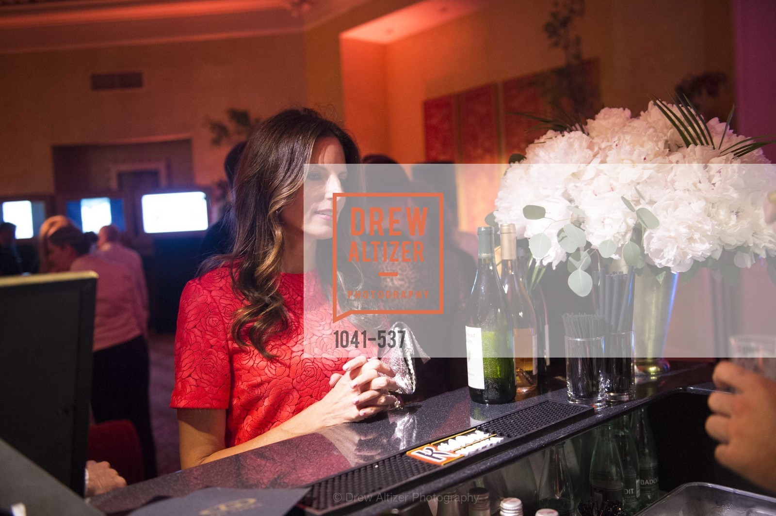 Gabriela Sarlo, TOP OF THE MARK'S 75TH Anniversary Party, US, November 6th, 2014,Drew Altizer, Drew Altizer Photography, full-service agency, private events, San Francisco photographer, photographer california
