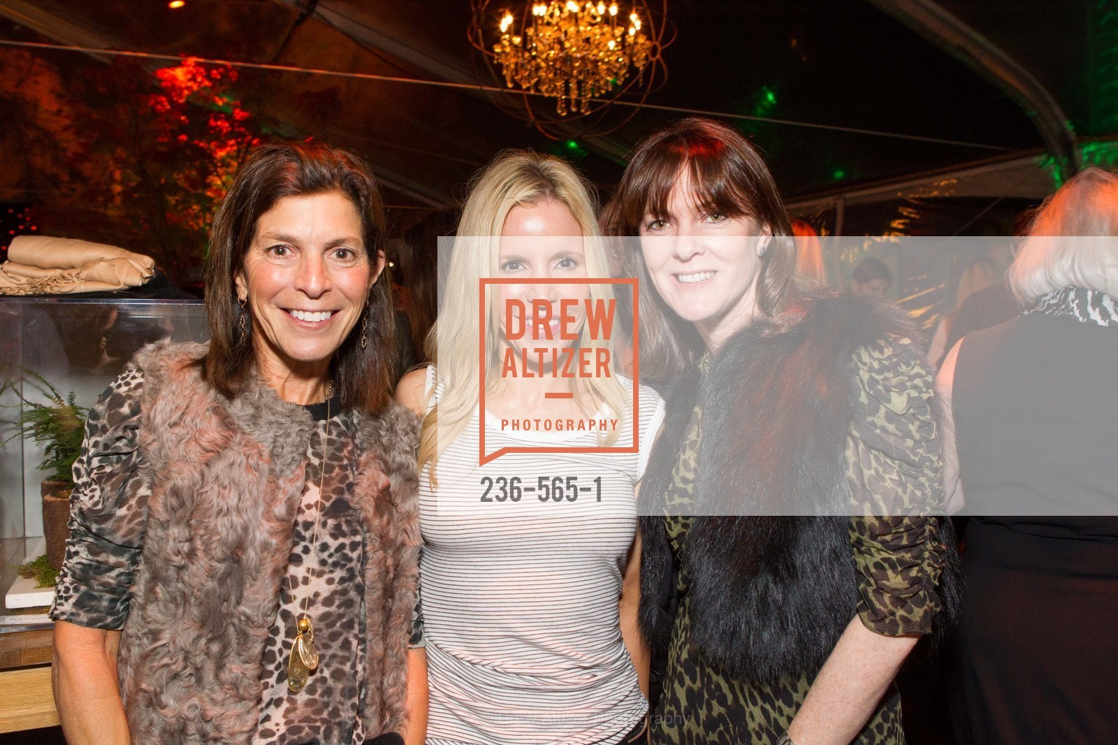 Susan Swig, Lana Adair, Allison Speer, GLAAD GALA Kick-Off Party Hosted by SAKS FIFTH AVENUE, Saks Fifth Avenue. 384 Post Street, September 12th, 2014,Drew Altizer, Drew Altizer Photography, full-service agency, private events, San Francisco photographer, photographer california